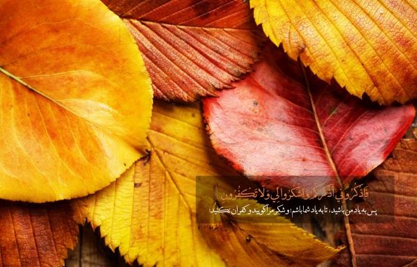 ختم بسیار مجرب اذکار قرآنی برای برآورده شدن حاجات از امام حسین (ع)