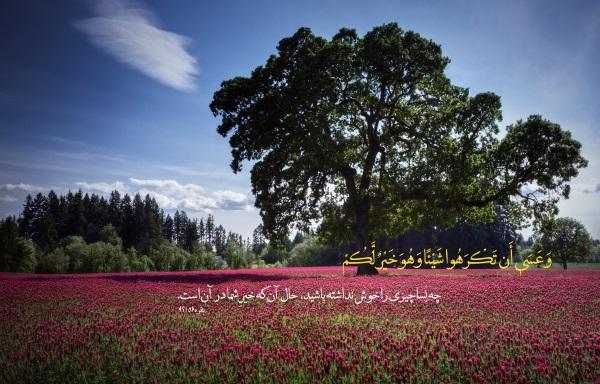 آیات قرآنی بسیار مجرب برای برطرف شدن پریشانی و آشفتگی خاطر