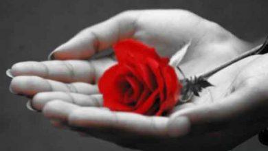 دعای عشق و محبت همسر دعای عشق و محبت قوی دعای عشق و محبت فوری دعای عشق و محبت بین زن و شوهر دعای عشق و محبت دعای عشق و ازدواج دعای عشق همسر دعای عشق محبت دعای عشق عاشقی دعای عشق شوهر به زن دعای عشق سوزاندنی دعای عشق سریع دعای عشق زن و شوهر دعای عشق زلیخا دعای عشق دیوانه وار دعای عشق به خدا دعای عشق از راه دور دعای عشق از دست رفته دعای عاشقی دعای بیقراری معشوق از راه دور دعای بی قراری یار دعای بی قراری شوهر دعای بی قراری با فلفل سیاه دعای بی قراری دعای بی قرار کردم معشوق دعای بی قرار شدن دعاي عشق و عاشقي