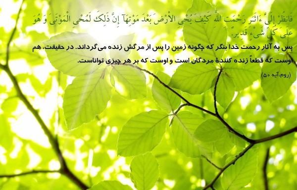 روش بسیار مجرب برآورده شدن حاجت ها با قسم به مقام علی (ع) و خاندانش