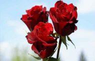 دعا برای عزیز شدن نزد شوهر تضمینی و مجرب