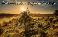 دعای امام صادق علیه السلام برای رسیدن به حاجات و مهمات