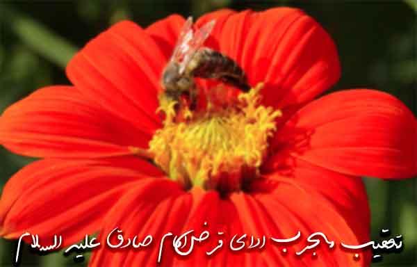تعقیب مجرب ادای قرض امام صادق علیه السلام