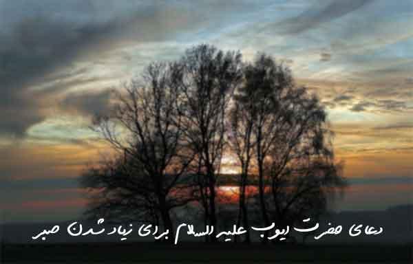 دعای حضرت ایوب علیه السلام برای زیاد شدن صبر