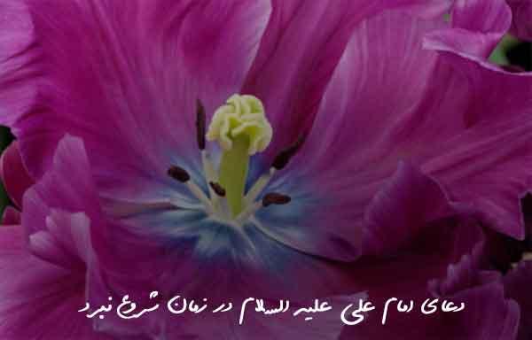 دعای امام علی علیه السلام در زمان شروع نبرد