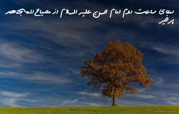 دعای ساعت دوم امام حسن علیه السلام از مصباح المجتهد پرخیر