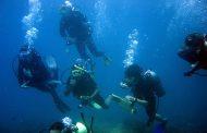 غواصی در دنیای اسرارآمیز خلیج فارس
