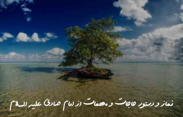 نماز و دستور حاجات و مهمات از امام صادق علیه السلام