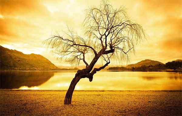 دعای رفع مشکلات و هنگام روبرویی با سختی ها و گرفتاری ها