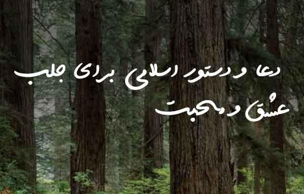 دعا و دستور اسلامی برای جلب عشق و محبت
