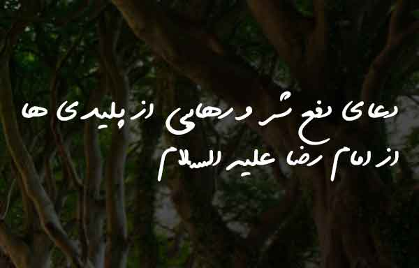 دعای دفع شر و رهایی از پلیدی ها از امام رضا علیه السلام