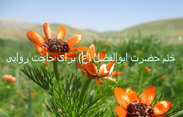ختم حضرت ابوالفضل (ع) برای حاجت روایی