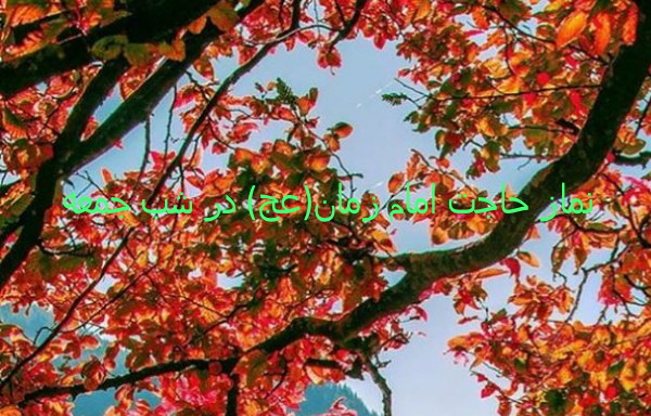 نماز حاجت امام زمان(عج) در شب جمعه
